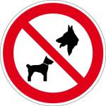 Prohibition sign - Dogs forbidden